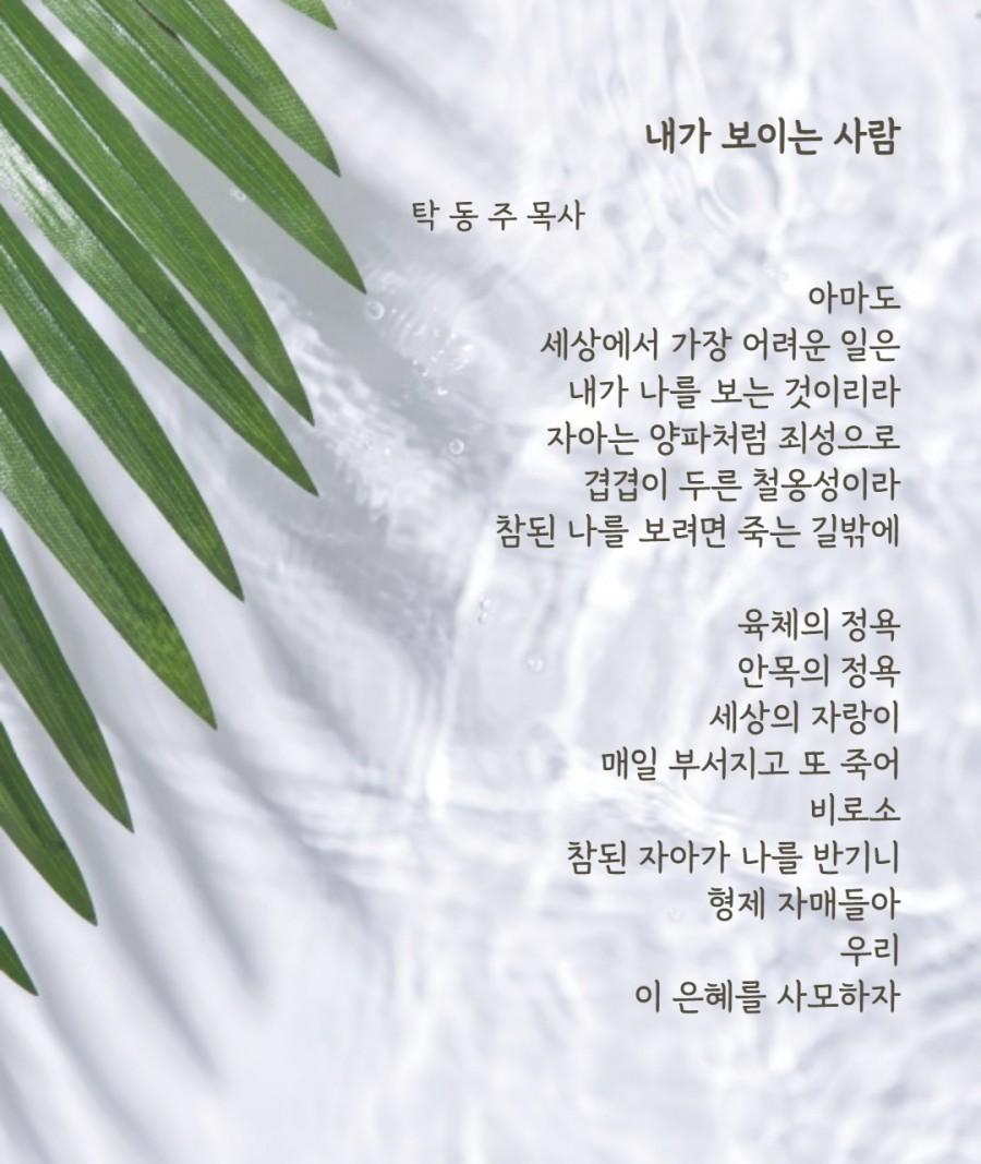 대전샬롬교회 / 목회칼럼